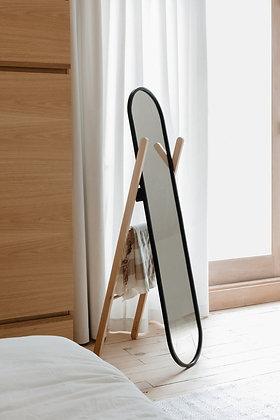 Mirror with ladder