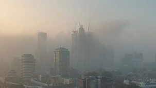 fog2021.jpeg