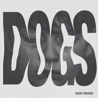 Daisy Brains