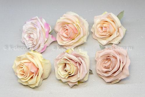 Голова розы Андорра дополнительные