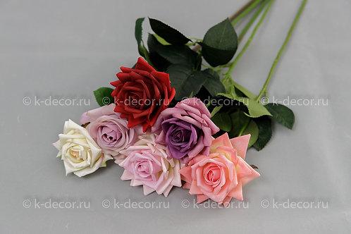 Роза Фелиция силикон