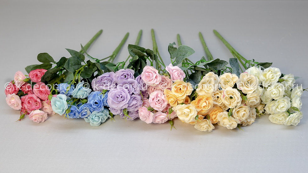 Роза мелкоцвет