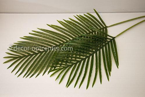 Лист финиковой пальмы одиночный