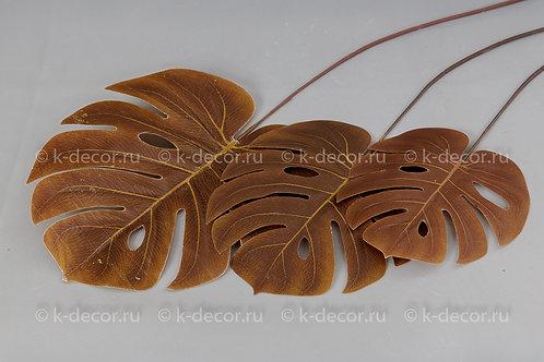 Лист монстеры коричневый