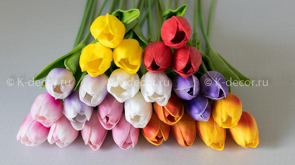 Одиночка тюльпан латекс