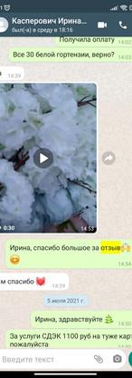 WhatsApp Image 2021-07-18 at 12.46.50.jpeg