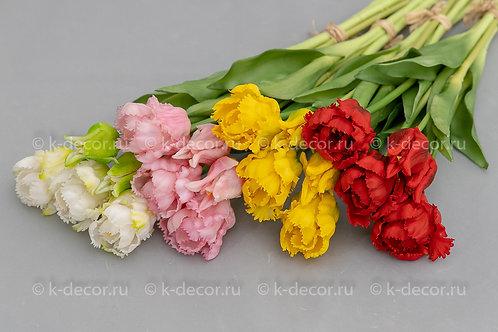 Букет тюльпан Махровый Реал Тач