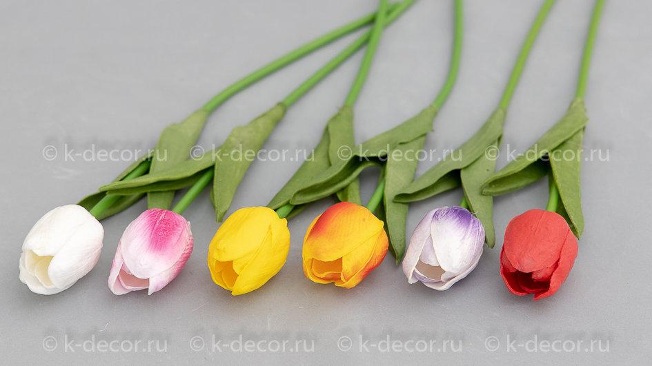Тюльпан латекс