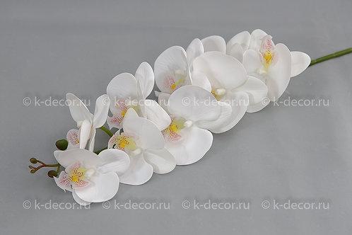 Ветка орхидея Флорида белая
