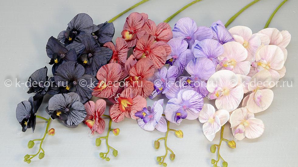 Ветка орхидея Сильвия