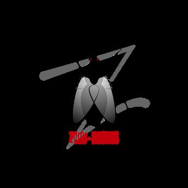 לוגו לחברה המשווקת רחפנים