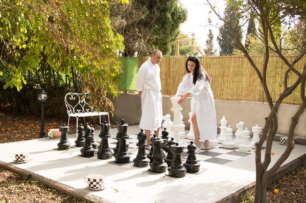 שחמט.jpg