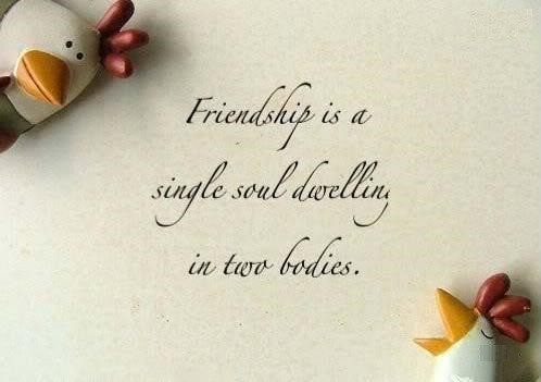 Image result for quotes on friendship in hinglish