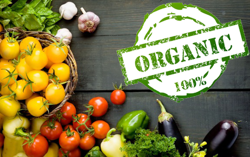 Image result for organic vegetables
