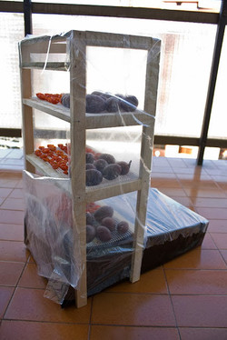 tomate_cherry_seco_e-cocina_1
