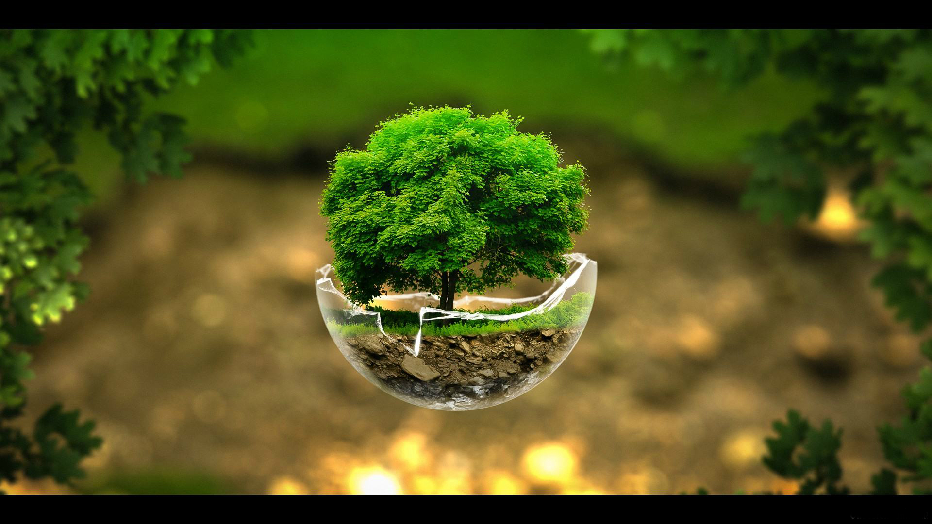 Earth-Day-2015-Wallpapers