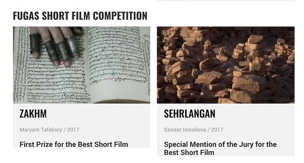 Maryam Tafakory Awarded the First Prize for the Best Short Film DOCUMENTAMADRID