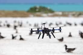 O uso de tecnologias no auxílio à programas de conservação de fauna silvestre