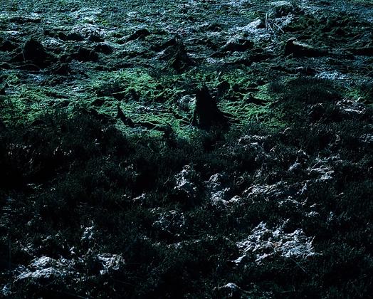 #59 Sem Título | Untitled#59 Da infância de Ivan, Portugal