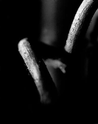 #24 from Schizophrenic Inquiry series