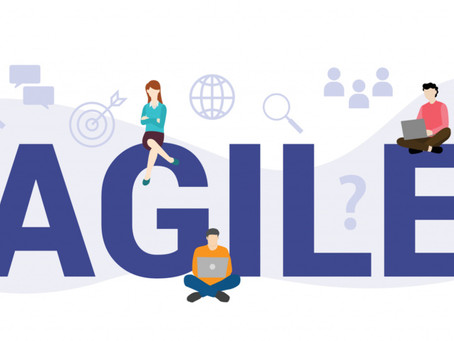 Is agile management feasible?