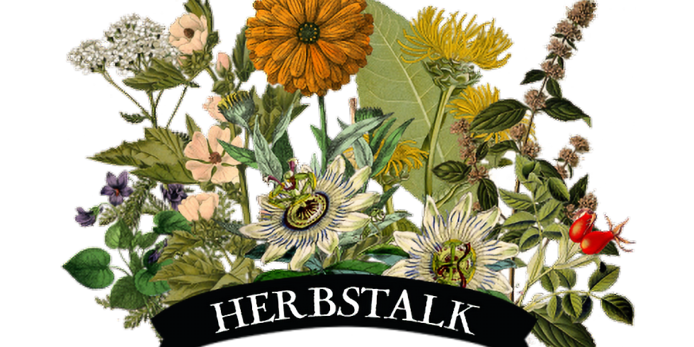 Decolonizing Herbalism: Inclusivity & Diversity