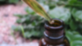 Tincture-herbalism-atlanta-holistic-heal