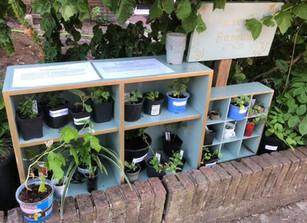 Plantenbieb Bussum