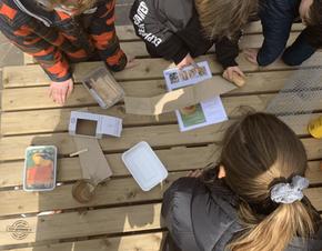 Bussumse Montessorischool verduurzaamt