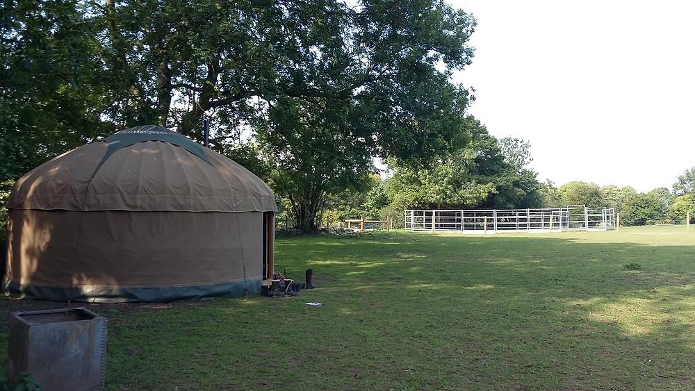 The yurt - a real tardis!
