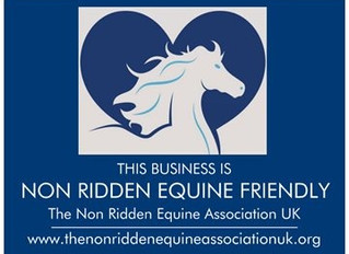 We have been approved as a Non Ridden Equine Friendly Business!