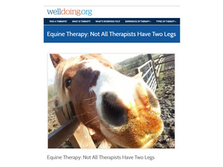 Not all therapists have 2 legs and not all therapy rooms have 4 walls...