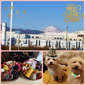 🎍 新年のご挨拶 🎍