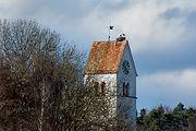 Storch  Steinmaur Horst Kirche 03.2020 D