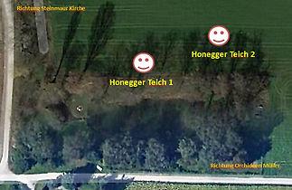 Honnegger Teich 1.jpg