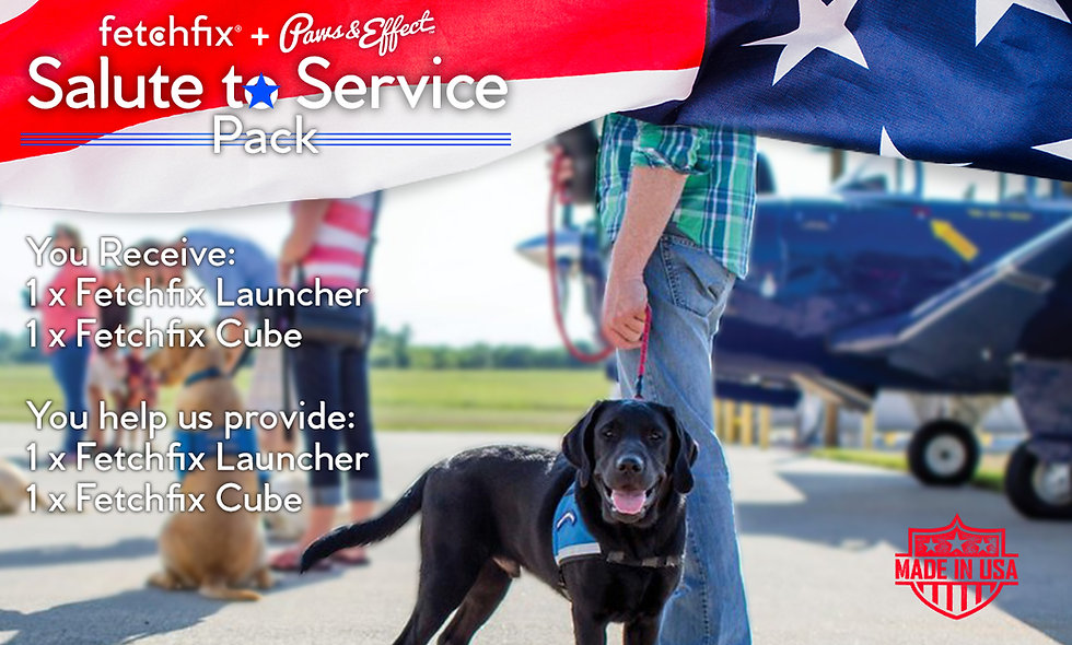 Salute to Service Pack