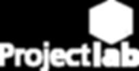 CUBO do Conhecimento, Gerente de Projetos, Projectlab