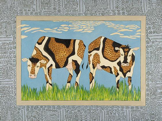8.5x11 Cows