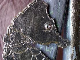 Seahorse Head Detail