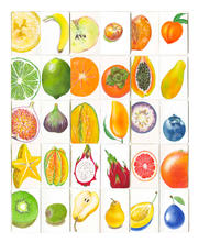 Sketchbook-Fruit