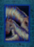 Sappire Zebras8x10.1200px.jpg