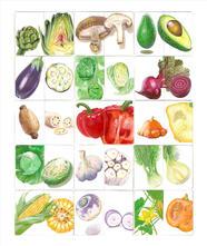 Sketchbook-Vegetables