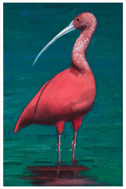 Exotic Bird # 1
