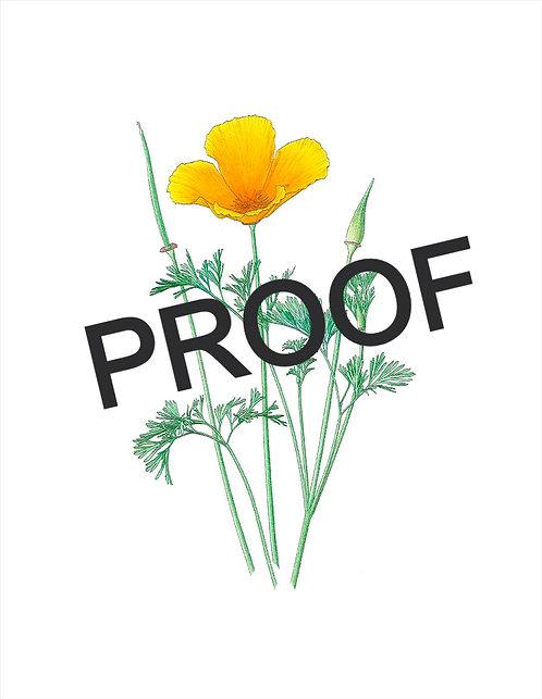 """8""""x10"""" Proof Print - Kristin Jakob"""