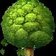 deciduous-tree-apple.png