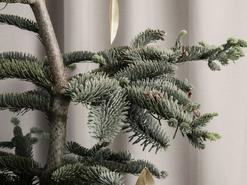 CHRISTMAS WITH VESTA; OUR DESIGNER FESTIVE TAKEOVER