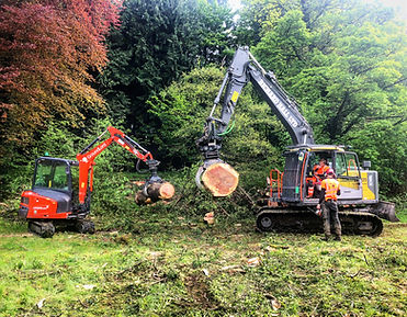 At GroundLord we understand that forestry is not simply the clear felling of trees. We recognise that forestry also encompasses the management of trees and that our services may be required to achieve a number of objectives; from timber production and land reclamation to wildlife habitat.