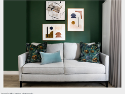 THE PICTUREHOUSE PROJECT FEATURING LITTLE GREENE
