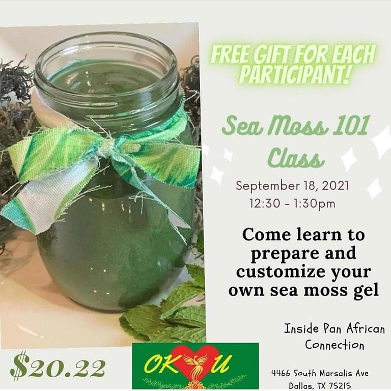 Sea Moss 101; Learn to Make Sea Moss Gel