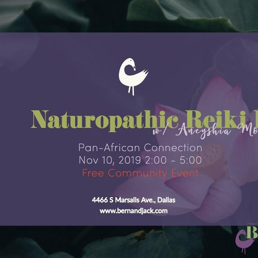 Naturopathic Reiki I